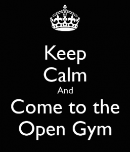 OpenGym113013